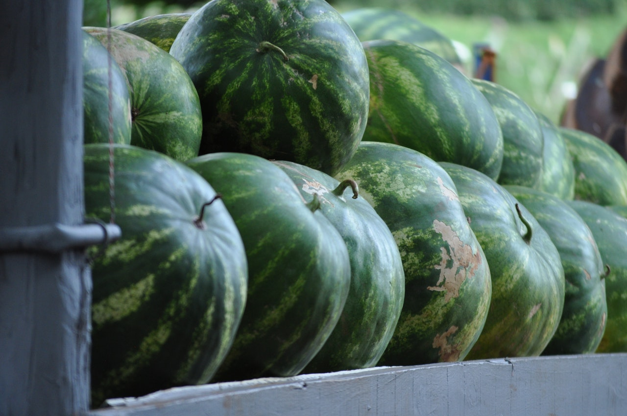 watermelons on a rack