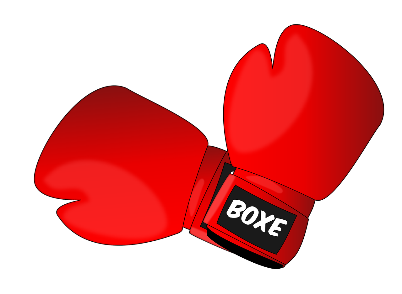 red boxing gloves/Boxing Party Ideas